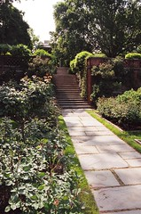 Steps into the Rose Garden (lv627w) Tags: urn garden landscape design dc washington spring terrace gates masonry terraces ornamental borders lattice rockery landscapearchitecture urns italianate dumbartonoaks formalgardens ornamentalironwork decorativepaving beatrixfarrand