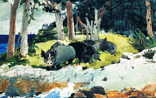Winslow Homer Wild Boars
