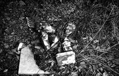 Broken (Nikos.K.) Tags: 2016 athens greece statue broken angel blackandwhite film leicam4p rangefinder elmar 135 expired expiredfilm expired1987 kodakpanatomicx homebrewdeveloper d76