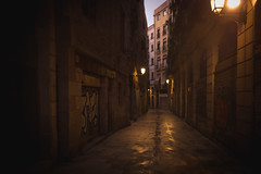 Empty street; Barcelona, Spain (erik-peterson) Tags: barcelona d3s erikpeterson spain street alley barca morning early sunrise wet water