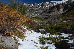 Snowy Pond (jlrminer) Tags: nevada nikon rubies rubymountains