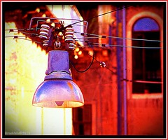 """Electric Blossom"" (""SnapDecisions"" photography) Tags: palermo italy lamp light leica m7 fuji velvia"
