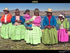 UROS (Fil.ippo (4000K views!)) Tags: travel people lake titicaca lago islands floating per titikaka viaggio islas filippo indigenous indigen flotantes galleggianti isole d5000 indigeni