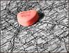 恋爱的距离