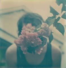 (Jake Casapao) Tags: flowers polaroidsx70landcamera instandfilm polaroidtzartisticfilmexpired