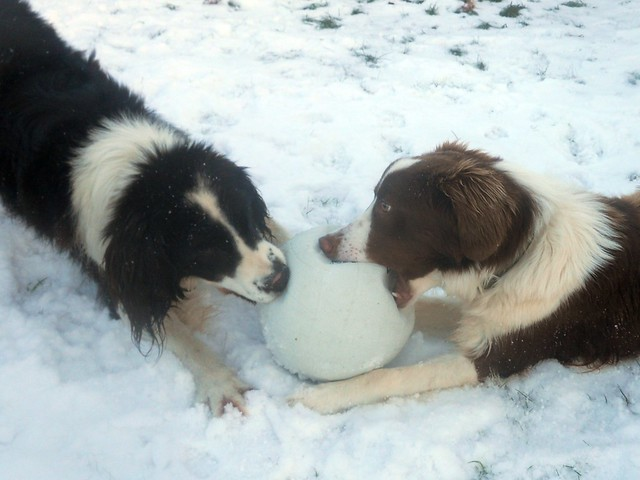 Jack and Ben