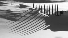 Schatten im Schnee B&W (mikiitaly) Tags: schnee zaun schatten muster supershot blackwhitephotos flickrchallengewinner saariysqualitypictures flickraward flickraward5 pinnaclephotography flickrawardgallery bestofblinkwinners ruby15 ruby20 rubyfrontpage