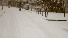 IMG_6449 (pellegrini_paris20) Tags: snowflake schnee white snow paris canon eos flake neige weiss blanc ville flocons flocon itsnows flocke flocken schneeflocke schneit flocondeneige souslaneige esschneit floconsdeneige ilneige 1000d