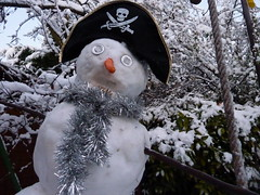 Snow Pirate