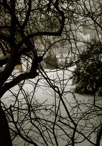 blizzard 12.11.10