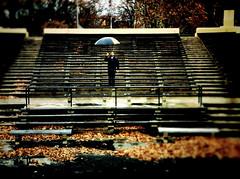 """The Little Prince Landed from the Moon... with an Umbrella"" (Sion Fullana) Tags: allrightsreserved sionfullana nyc newyork newyorkers newyorklife streetshots portrait poetry lluvia dreamy creative rain rainyday umbrella urbanshots urbannewyork urban throughthelensofaniphone iphonephotography iphoneshots iphone iphone4 iphoneography iphoneographer editedanduploadedoniphone blur paraguas thelittleprincelandedfromthemoon eastriverpark characters citylife portraits roberto"