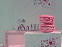 [3\10] (NOURA - alshaya ) Tags: paris french                               macaron shiftychoketjewelrycandypinklight francenueroaflickrcanon500