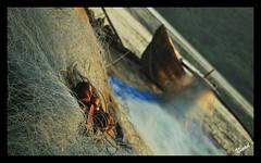 The Net (cantfindninad) Tags: beach boat fishing coastline maharashtra fishingnet konkan malvan sindhudurg incredibleindia deobag