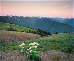 Spot of moon at sunset..... (Vinnyimages) Tags: sunset summer film washington washingtonstate olympicnationalpark hurricaneridge pentax6x7 pentax67 vinnyimages