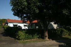 中興新村房舍。