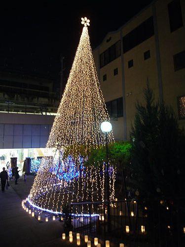 クリスマス@親愛幼稚園(奈良基督教会)-04