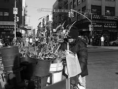 FlowerDude (Street Witness) Tags: street nyc chinatown samsung florist push cart nv7