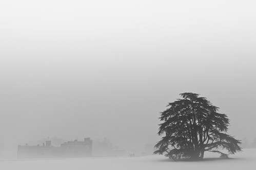 White Out (Leeds Castle), Kent by flatworldsedge