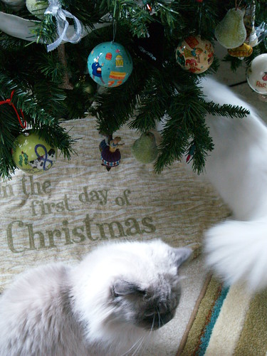 12 Days of Christmas tree amd kitties