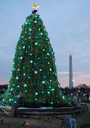 White House Christmas 6