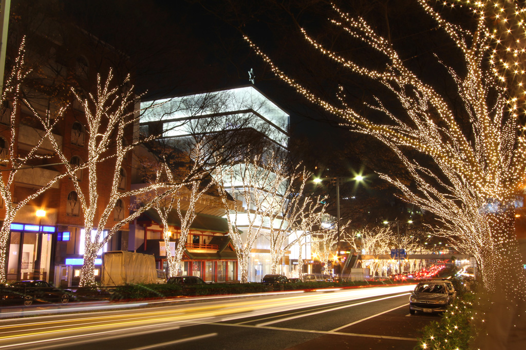 Omotesando Illuminations 2010 (14)