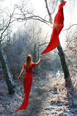 Seduced by red... (Eliza Frydrych) Tags: winter red white girl forest cat woods fabric material czerwony cotcpersonalfavorite canoneos450d