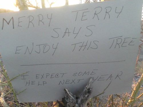 Merry Terry says enjoy this tree. I expect some help next year.
