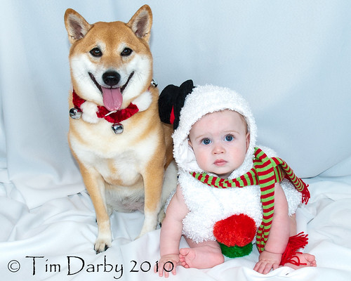 11-10-Christmas Portraits-82