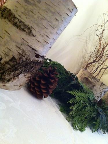 Birchbark Tablescape