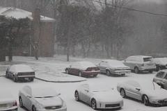 So much for my dreams of a snow-free winter in New Jersey.... (Hazboy) Tags: schnee winter usa snow weather newjersey nieve sneeuw nj neve neige blizzard lumi northeast  sn nieg elurra snjr nevar snee  zapada h hazboy hazboy1  snja nevicar