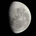 Misión Apolo XI (16 al 20-Julio-1969)