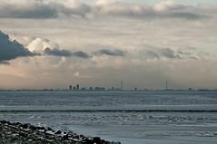 _DSC4011 (durr-architect) Tags: sea lake day cloudy nl flevoland almere oostvaardersdijk