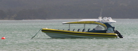 Our cruise boat, looks fast, is fast