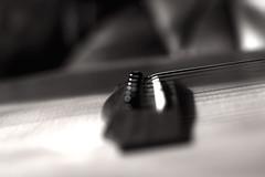 Bokehlicious string (Chinsaris) Tags: b white black canon aperture noir bokeh guitar d c w acoustic string strings 40 mm f18 50 et blanc guild gad cordes cutaway 550 frets chevalet lutherie frettes