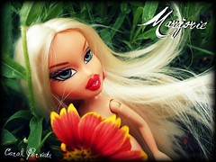 Bratz Doll Next Top Model - Marjorie audition (Carol Parvati ) Tags: soccer marjorie picnik bratz cloe playsportz carolparvati