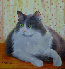 My Sweet Chloe 1997-2010 (Elizabethc) Tags: white black art cat painting artwork memorial feline artist acrylic michigan gray longhair kitty tuxedo battlecreek elizabethcrabtree