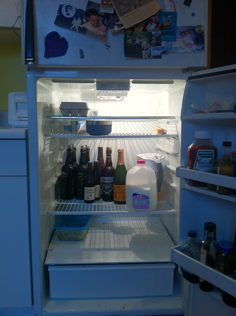 The single guy's refrigerator
