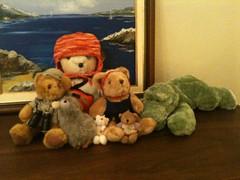 Bear Spotting Adventures  New Years Teddy Bears