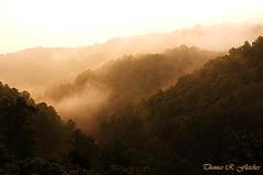 Misty Mountain Sunrise (travelphotographer2003) Tags: usa mist sunrise solitude westvirginia serenity appalachianmountains alleghenymountains mistymorning braxtoncounty beautyinnature thomasrfletcher mistymountainsunrise