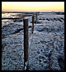 See Da Fence on Friday. (steelo2010) Tags: camera sunset sea sky sun snow ice me water beautiful skyline contrast digital fence coast scotland seaside nice interesting sand focus scenery exposure frost colours photographer sundown photos kodak horizon sunsets explore gretna coastal rivers excellent serene colourful kodakeasyshare sunsetting easyshare solway firth viewed z650 pleasing solwayfirth riveresk kodakz650 borderesk steelo beautyofwater steelo2010 rivereskchannel