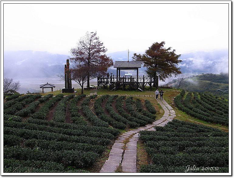 玉蘭茶園 (2)
