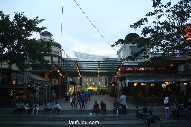 shopping 3 (2)