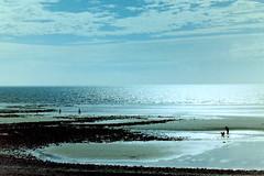 Moonlight on the Irish Sea (billnbenj) Tags: dog moon reflection beach cumbria moonlight barrow dogwalker irishsea scannednegative walneyisland