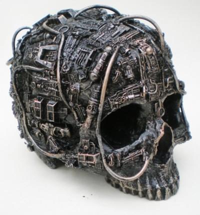 Richard Symons Borg Skulls