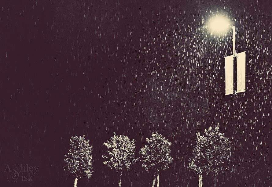 Snowwy Night