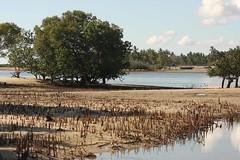 Mozambique-4505