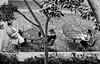 (daveson47) Tags: monochrome mono bw blackandwhite street streetphoto people candid ricoh ricohgrd grd streetphotography