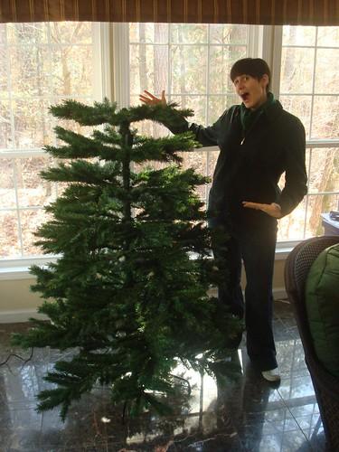 O Christmas Tree