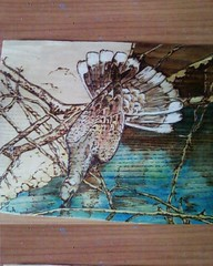 -  (AEGEOTISSA) Tags: wood art pyrography   httpstephanieareliblogspotcom