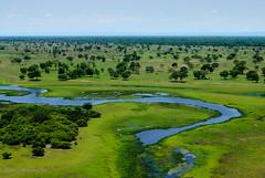 Pantanal - MS